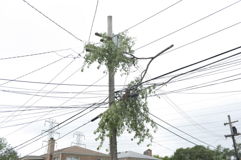 Utility Line Cleanup